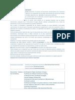 Documentación Internacional.docx