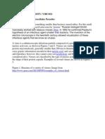 Diversity of Viruses.pdf
