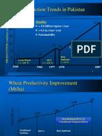 wheat slides.ppt