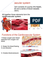 Cardiovascular System.ppt