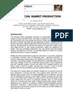 commercial rabbit production.pdf