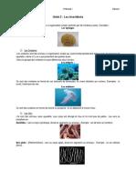 Bio 1°ESO Invertebrados.pdf