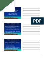Arquitectura estratégica.pdf