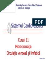 CV11.pdf