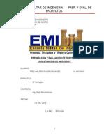 Informe Eval de Proyectos