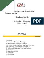Nuno Delgado Cogeracao Trigeracao