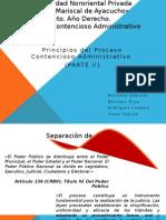 Principios Constitucionales (Contencioso Expo)