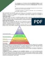 La Pirámide de Maslow es una teoría