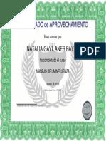 Certificado de Aprobacin Del Curso Ah1n1(1)