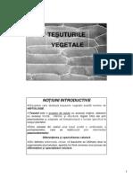 morfologia_anatomia plantelor_ AH 2_tesuturile.pdf