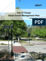 Tampa Urban Forest Management Plan draft