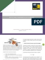 GUIA DE PRÁCTICA  No. 5 GRAFICAR DEMANDA_ OFERTA Y EQUILIBRIO