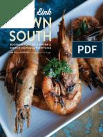 DownSouth-preview.pdf