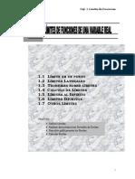 64099221-calculo-limites.pdf