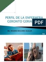 Perfil Del Profesional de Enfermeria en Gerontologia y Geriatria[1][1] (2)