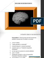 Introducere in Neurostiinte Curs 1