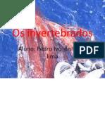 Os invertebrados.pptx