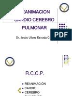 Curso RCCP Básico