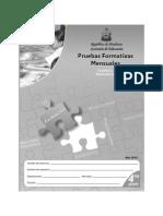 Prueba Formativa 4º ESP y MAT (2010)