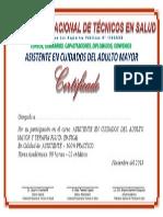 ASISTENTE EN CUIDADOS DEL ADULTO MAYOR.docx