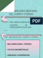 Enfermedades Benignas Del Cuerpo Ut Malformaciones,Polipos -2010