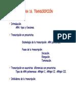 Tema 16.Transcripcion.pdf