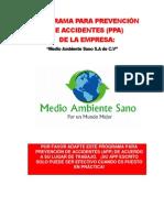 3.1.5 y 3.1.6 Programas de Prevencion de Accidentes- Programa de Contingencias