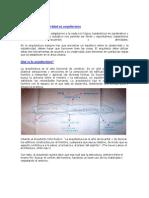 Objetividad y Subjetividad en Arquitectura