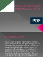 PRODUCCION DE PROTEINAS RECOMBINANTES EN E.pptx