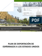 Plan Marketing Esparragos