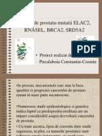 Cancer de Prostata-mutatii ELAC2, RNASEL