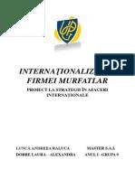 INTERNAŢIONALIZAREA FIRMEI MURFATLAR