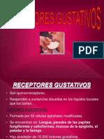 T3_Receptores gustativos