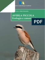 Averla piccola - Ecologia e conservazione