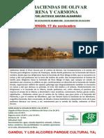 ruta por Alcalá 17 noviembre