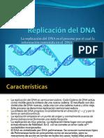 5-Replicaciondel DNA1Introduccion