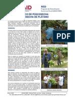 USAID RED Poscosecha Platano 01 06