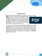 manualdeorganizacionyfunciones-121212230714-phpapp02