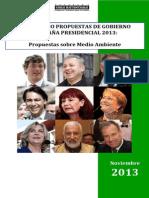 CHS Comparado Medio Ambiente Candidatos 2013
