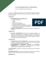 Estructura Del Informe de Practica Profesional