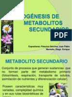 Biogenesis de Metabolitos Secundarios