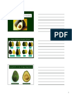 05-Postharvest Handling of Avocado (1)