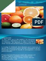 Deshitracion de Pulpas de Fruta Citrica Terminado (1)