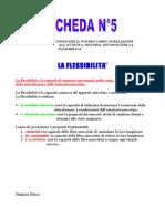 Sceda n°5