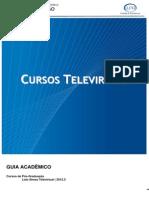 Guia Academico Telepresencial 2012.3
