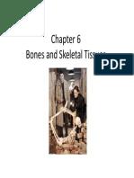 skeletal chp 10