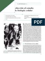 Biologia Celular y Molecular Gerald Karp 4ta Edic