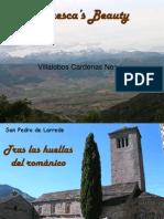 Huesca-Villalobos Cardenas Nervis