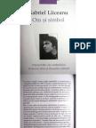 Gabriel Liiceanu - Om si Simbol