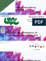 (117926326) Metabolismo de Aminoacidos(1)